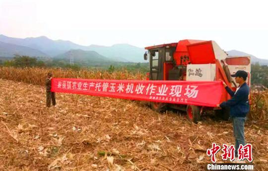 """山西黎城借农田""""托管班""""提效增收:农民打工种地两不误"""