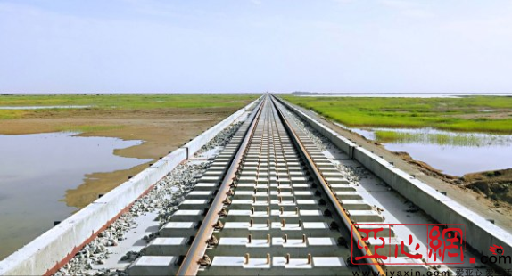 格库铁路台特玛湖特大桥铺轨完成三分之二