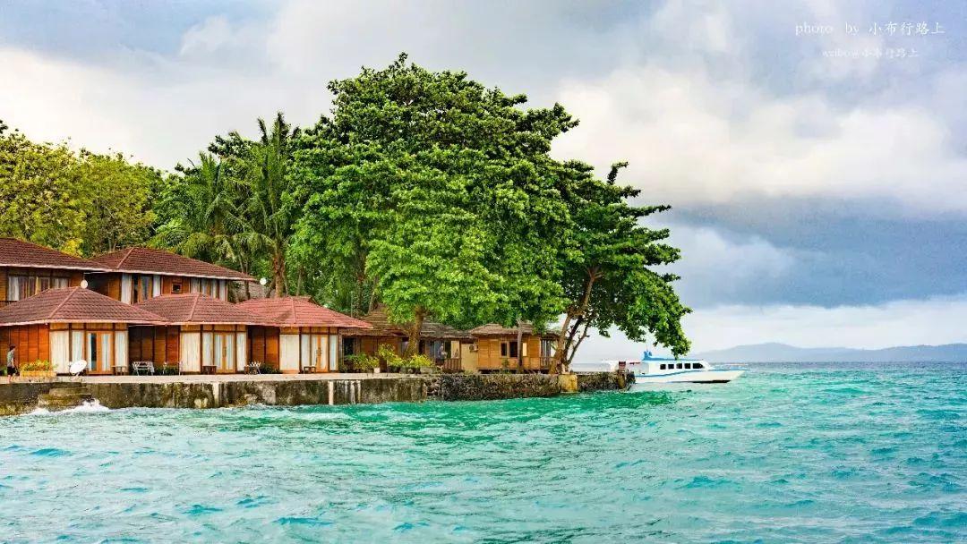 1998年,澳洲墨尔本大学的马克诺曼,在印尼苏拉威西岛附近的河口水域发现一种章鱼,能迅速拟态成海蛇、狮子鱼或者水母,以有毒生物的假身份,避免被天敌攻击。这个天才的化妆大师,无论是在珊瑚、岩石、沙子还是海藻丛中,都可以在几秒钟内完成隐身。想想吧,当一块覆盖着藻类的石头突然变成一大堆触手,亮出正中一对尖锐的角质腭被紧紧抓牢的猎物,甚至来不及弄清一切是怎样发生的。 毯子章鱼则采取另外的策略。它们背部的触手像网一样交织在一起,并由一个膜连接起来,铺展在水中,如同一条长长的纱裙在流水中舞动。毯子章鱼很擅长操纵