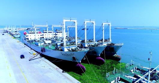从木壳渔船到远洋巨轮 沙窝岛背后的威海远洋渔业图谱