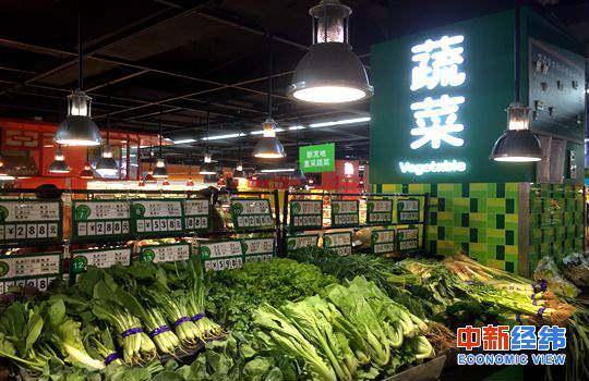 材料图:蔬菜。中新经纬摄