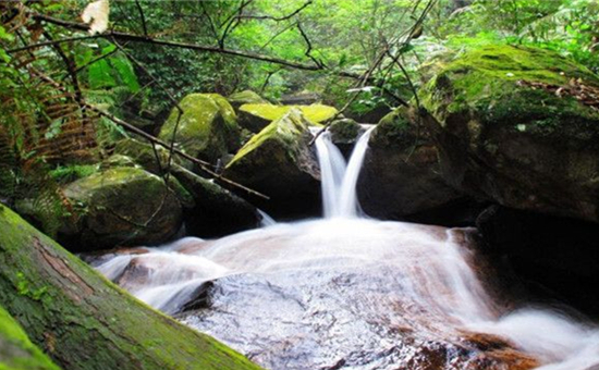 三明仙人谷国家森林公园总体规划获批复