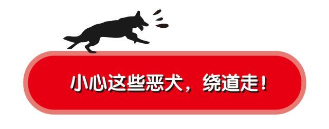 """博狗几个平台·「特写」一个跨境电商卖家的东南亚""""物流之痛"""""""