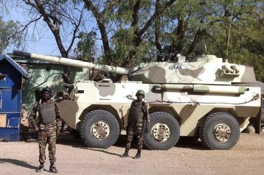 外媒:喀麦隆获中国5000万美元军援 将用于购买武器