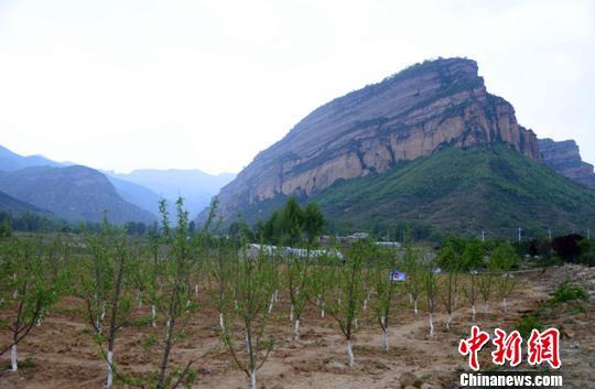 山西无煤县全民义务植树420余万株 借生态资源激发文旅产业