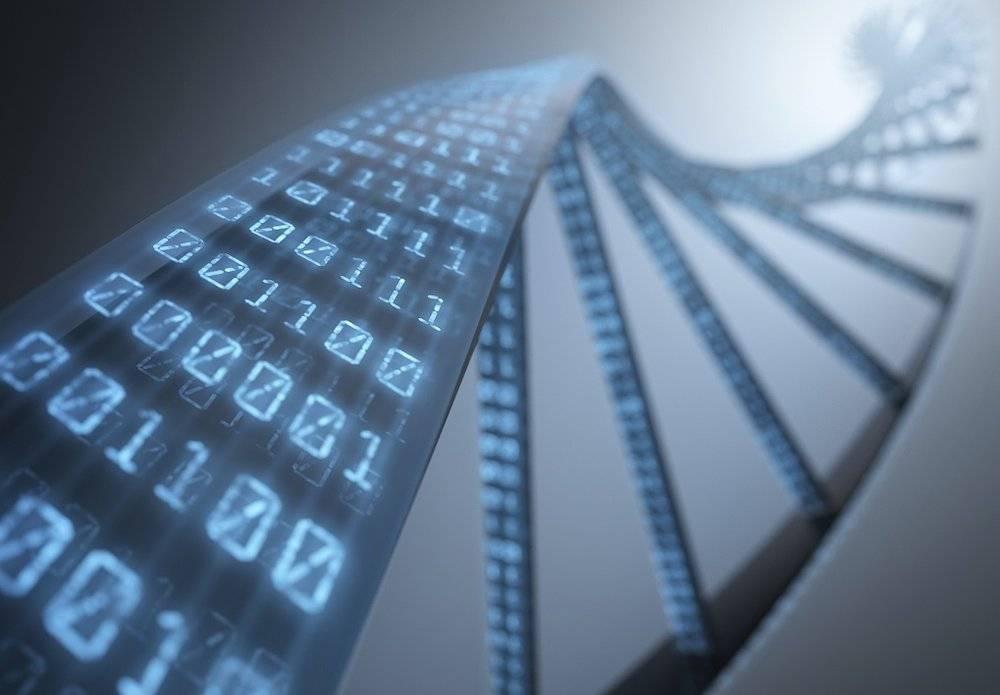 用一公斤DNA代替你的硬盘,靠谱吗?