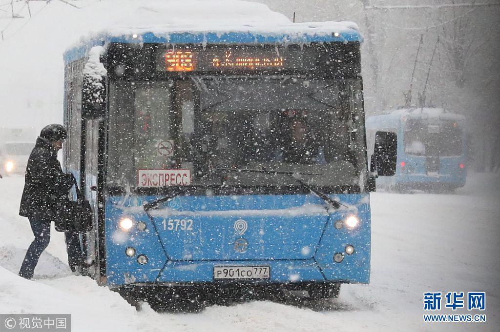 莫斯科降雪量破纪录_大树坍塌航班被延误