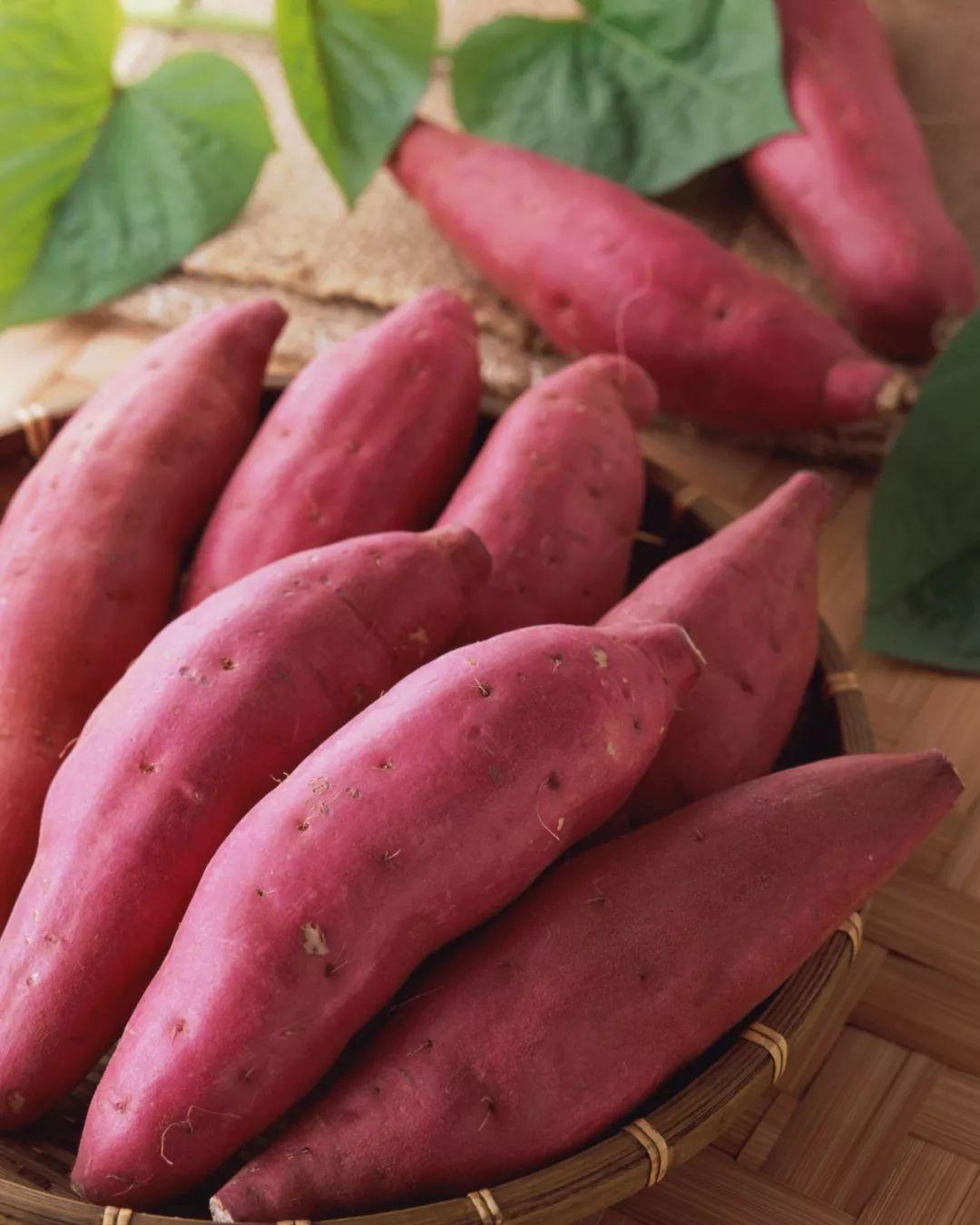 地瓜中所含的纤维质松软、易消化,可促进肠胃蠕动,从而助于排便。
