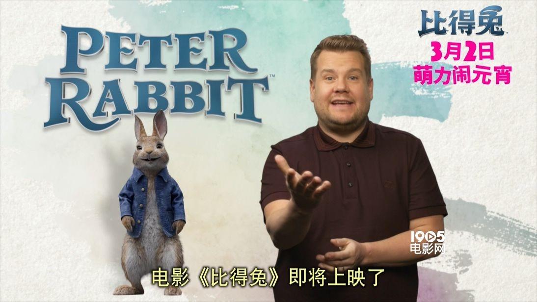 《比得兔》曝新预告 兔界大佬颠覆形象搞怪搏出位