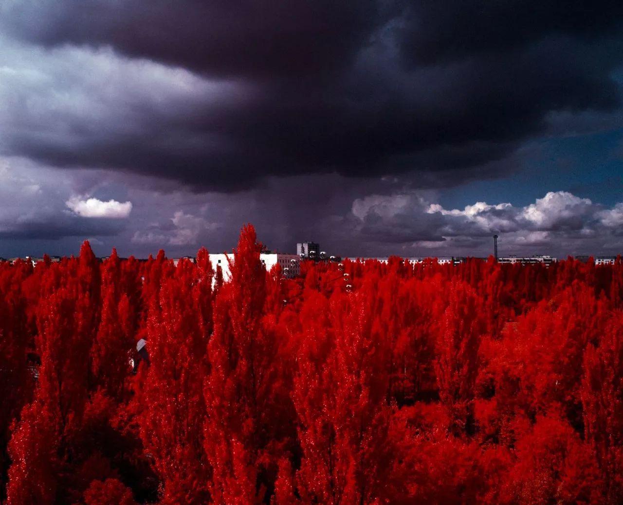 """红外线摄影,给你看""""未曾见过的世界"""""""
