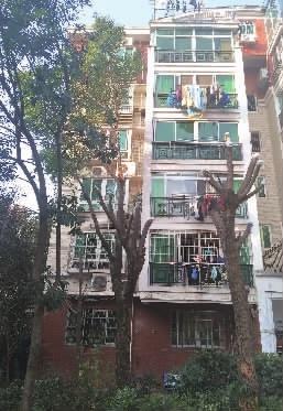 """遮了2楼采光,绿化树被业主剃""""光头"""""""""""