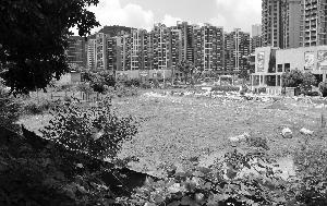 广东省某闲置的地王项目