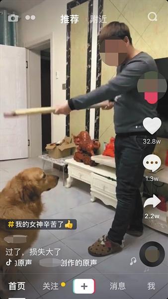 """抖音截图,内容为一名用户正在向宠物狗""""训话""""。"""