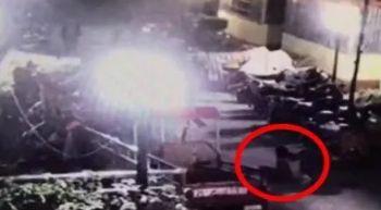 化粪井扔鞭炮引发爆炸,一熊孩子被炸飞,一小女孩被砸伤