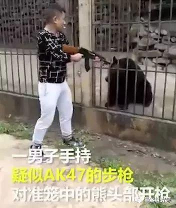 """▲男子持枪杀熊瞬间。 新京报""""我们视频""""截图"""
