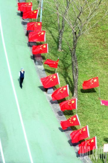"""""""中华爱国同心会""""中午在民进党中央党部前的公园插满五星红旗"""