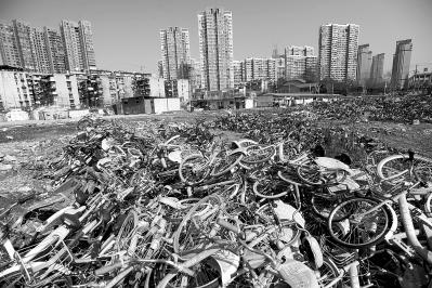 内沙湖附近一个闲置工地堆满共享单车 记者肖僖 摄