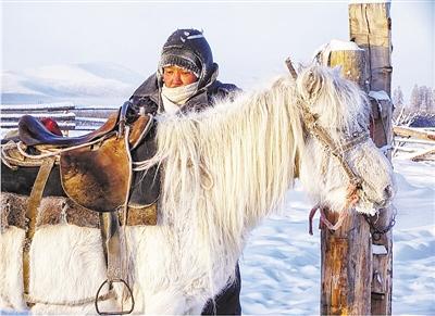 西伯利亚骏马 在零下60度生存