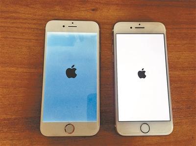 亮屏iPhone7模型机(左)与真机相比,可以假乱真摄影/本报记者 蒋若静