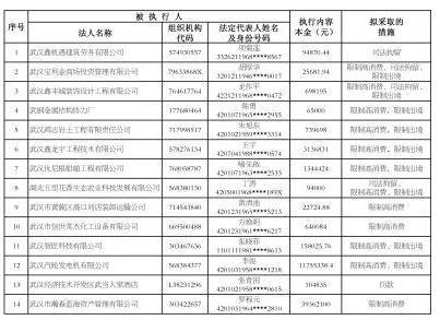 武汉发布2017年第6批失信黑名单 黑名单 第2张