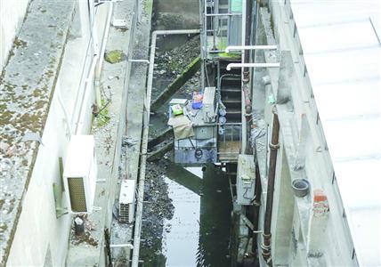 新场老街河浜黑臭问题改善 春节前完成截污纳管改造