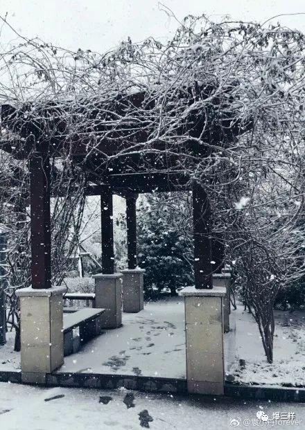 冷空气暴击全山东!济南暴跌至-6℃,烟台威海大雪已经10cm了!