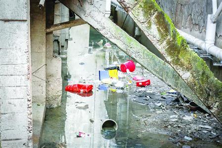 黑臭的小河丰水期垃圾涌上河岸,枯水期水体恶臭难闻。 /晨报记者 张佳琪