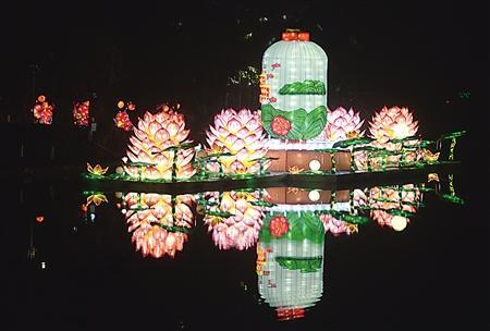 小记者注意了! 这次我们带你免费看重庆最美的