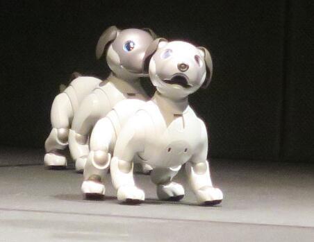 索尼开始发售新款Aibo机器狗 价格约1.1万