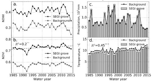 植物所等在北美巨杉受气候变化与干旱胁迫研究中获进展