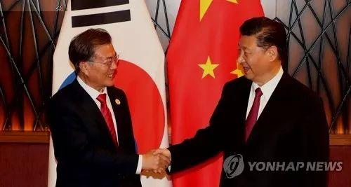 资料图片:11月11日下午,在越南岘港,文在寅(左)和习近平在APEC峰会期间举行的首脑会谈上握手。(韩联社)