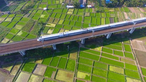 资料图片:1月18日,一列动车行驶在海南省琼海市境内。新华社发