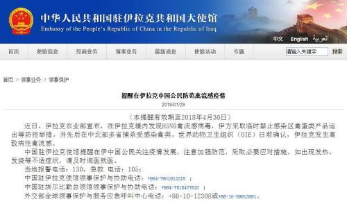 伊拉克现高致病性禽流感 中使馆提醒中国公民防范