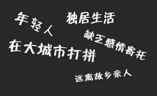 80后电子游戏大全:半月谈:中国空巢青年已超5800万_你中枪了吗?
