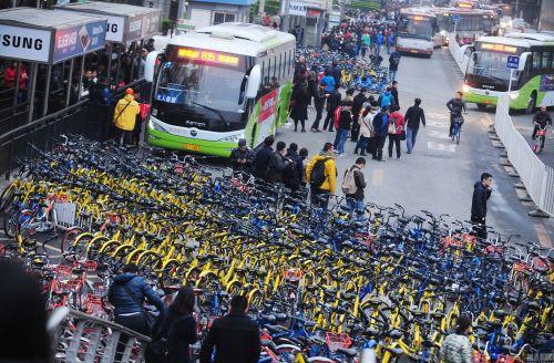 暂停新增投放后 北京共享单车四个月减少15万辆