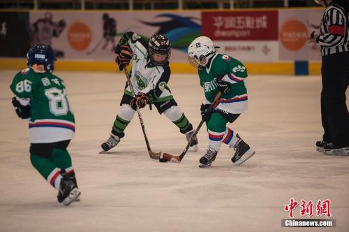 资料图:越来越多的青少年参与到冰球运动中。 中新网记者 翟璐 摄