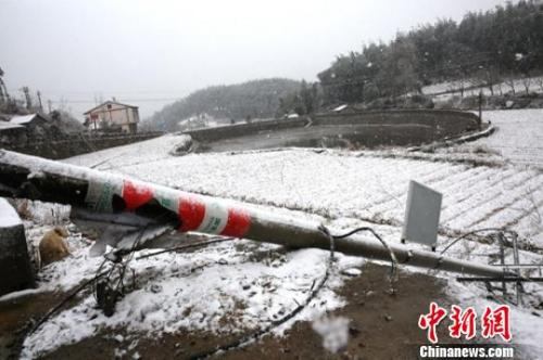 资料图:因降雪天气倒塌的电杆。 王鸿基 摄
