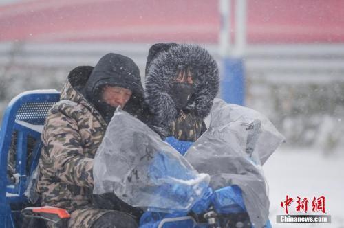 1月25日,安徽合肥降下大雪。 张娅子 摄