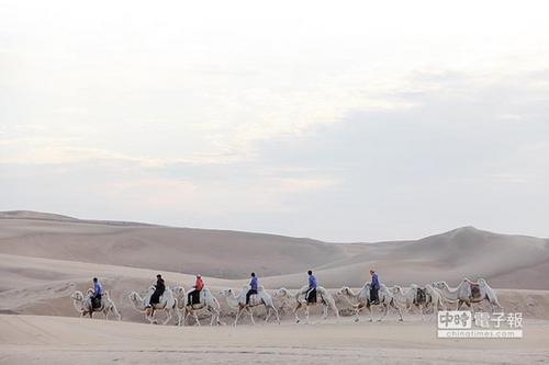 大陆许多沙漠都有骑骆驼行程,是台湾没有的游旅体验。图片来源:台湾中时电子报 记者李锌铜摄