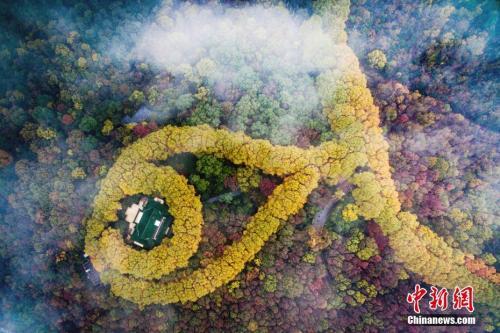 资料图:2016年11月18日,穿过云雾航拍南京紫金山。中新社记者 泱波 摄