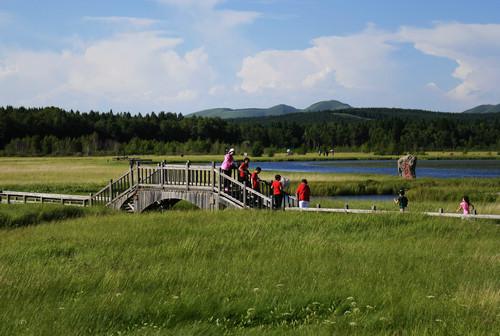 材料图片:旅客在塞罕坝国度丛林公园七星湖景区玩耍(7月11日摄)。新华社记者 王晓 摄