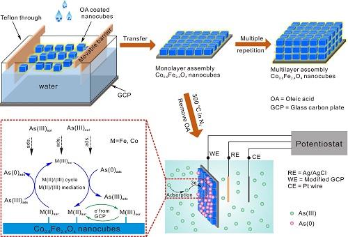 表面的fe(ii)和co(ii)活性,使其以活性电子传递介质的中间体参与到as