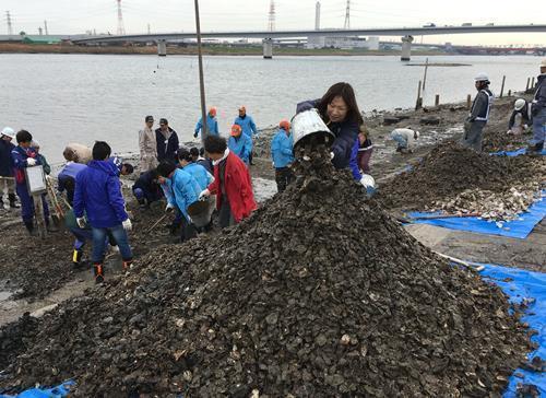 图注:当地志愿者正在清扫被丢弃的耗壳