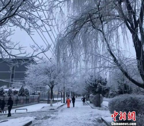 1月5日,甘肃武威市古浪县落雪后银装素裹。 钟欣 摄