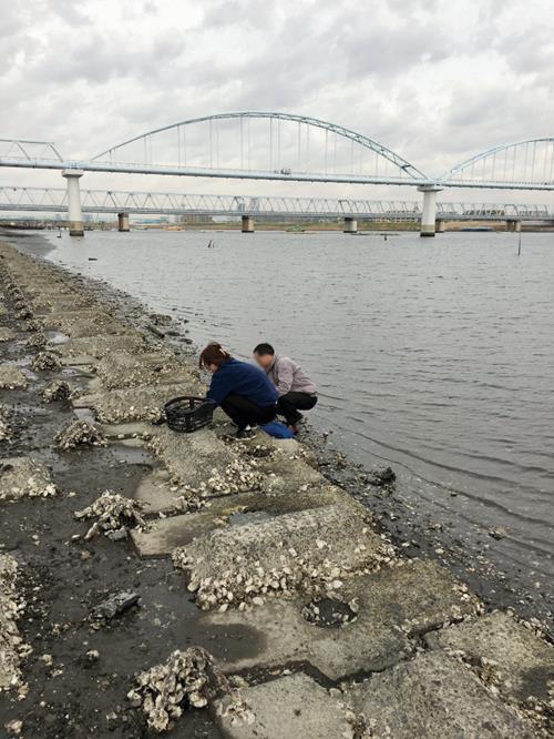 图注:两名在日中国人正在河边挖耗