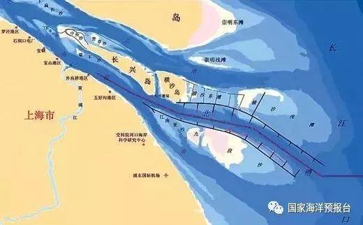 侠客岛:东海轮船相撞世界关注 对海洋生态啥影响