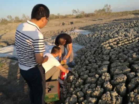 2017年8月31日,中央第八环境保护督察组现场检查发现,乌鲁木齐市部分污水处理厂非法倾倒污泥侵占破坏国家级公益林。图为工作人员对污泥进行现场取样。环保部供图