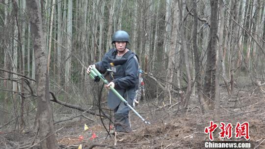 图为扫雷战士利用探雷器搜排地雷。 张广权 摄