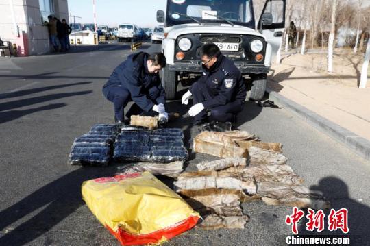 内蒙古二连口岸查获走私入境旱獭皮300张