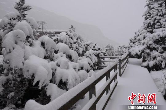 图为轿子雪山雪景。
